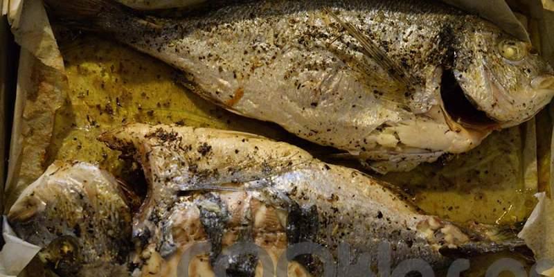 Τσιπούρες με μουστάρδα στο φούρνο