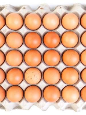 Το αυγό είναι πλούσιο σε πρωτεΐνες...