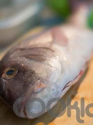 Συμβουλές: Μεγάλα ψάρια