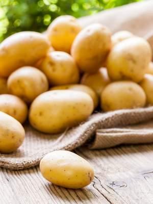 Την «πρώτη τηγανιά πατάτας» διεκδικούν η Αμερική, η Γαλλία και το Βέλγιο