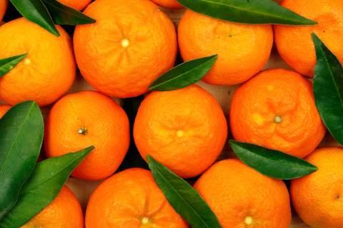 Οι ευεργετικές ιδιότητες του πορτοκαλιού