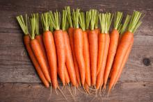 Τί στοιχεία περιέχουν τα καρότα;