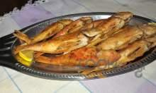 Μπαρμπούνια τηγανητά